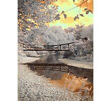 Forest Park Bridge Photographic Print