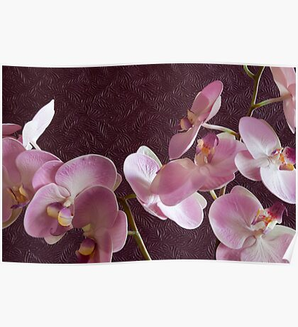 Pink Orchids On Burgundy Background Poster