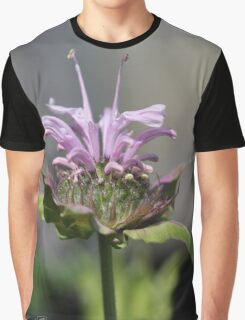 Bee Balm named Panorama Lavender Graphic T-Shirt