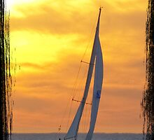 Sailing at sunset by Darren Speedie