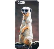 On The Lookout iPhone Case/Skin