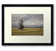Binya Plains Framed Print