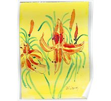 Day Lillies Poster
