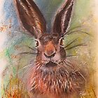 Hare (Jack Rabbit) in The Grass by Denise Hammond-Webb