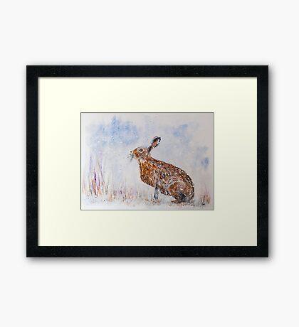 Hare (Jack Rabbit)  in a Snow Shower Framed Print