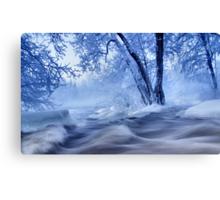 winter wonders Canvas Print