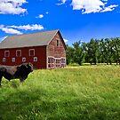 Bullish on America by Rick Louie