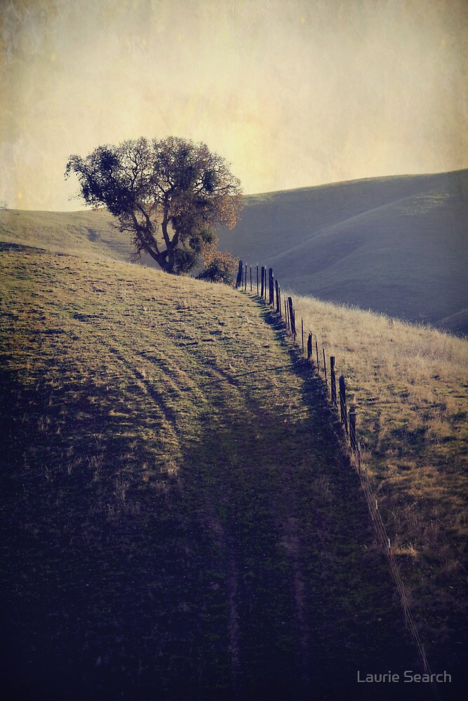 Another Uphill Battle by Laurie Search
