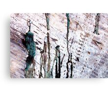 lil green man and chums Canvas Print