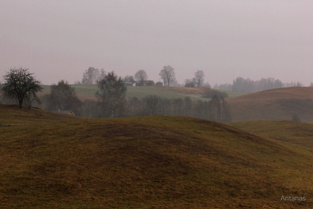 Winter landscape without snow by Antanas