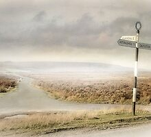 The Road To Farndale by patrixpix