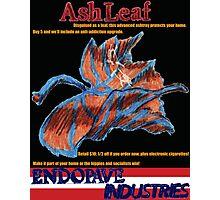 Ashleaf Photographic Print