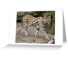 Adorable Serval Greeting Card