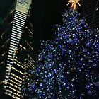 Bryant Park Christmas Tree by Barbara  Brown
