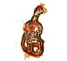 Violin/rust painting Photographic Print