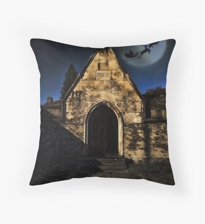 Merry Christmas to all and to all a good night!!! Throw Pillow