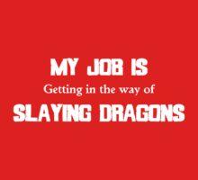 My Job Slaying Dragons Kids Clothes