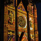St Marys Cathedral, Sydney, lit up for Christmas by petejsmith