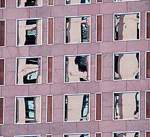 Denver reflection 10 by luvdusty