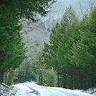 A Winter Drive by Geno Rugh