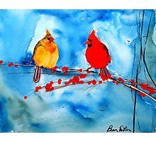 Cardinals Photographic Print