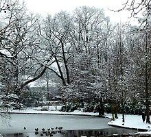 winter scene by supergold