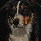 Pastel Painting - Border Collie by Sue Deutscher