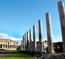Colesseum and Pilars of the Antiquarium Forense by PhysioDave