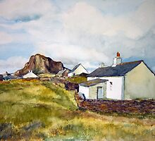 Cottages on Luing Scotland by Joyce Grubb