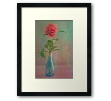 Winter Camellia Framed Print