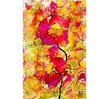 Floral Duet Photographic Print