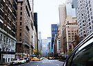 NYC010 by Svetlana Sewell