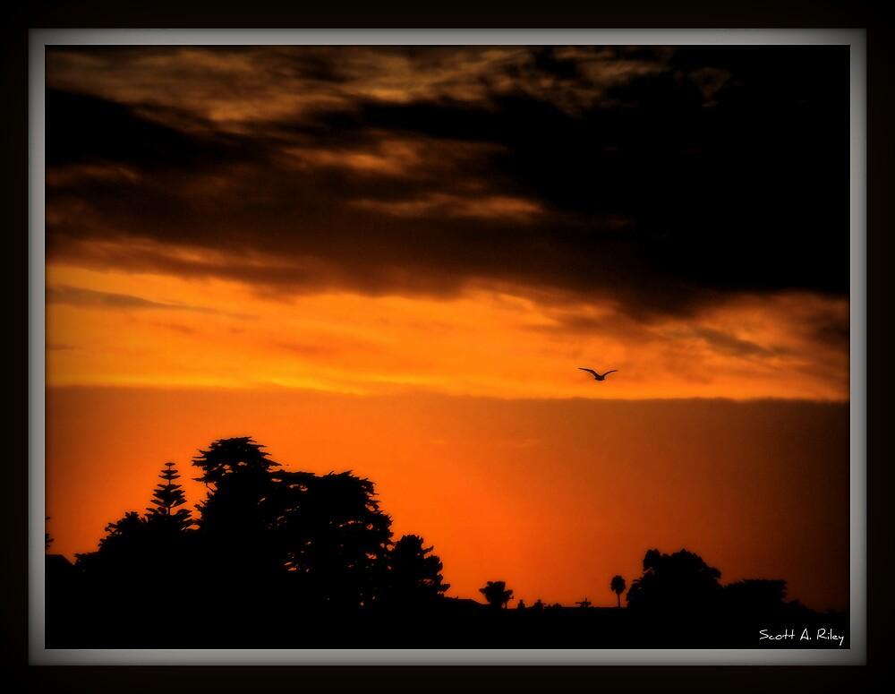 Sun Set in Santa Cruz, Ca by Scott Riley