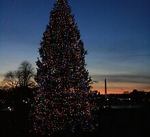 National Christmas Tree at Sunset by coopphoto01