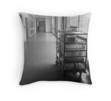 Food for Hospitallers Throw Pillow
