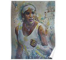 Serena Williams - Portrait 5 Poster
