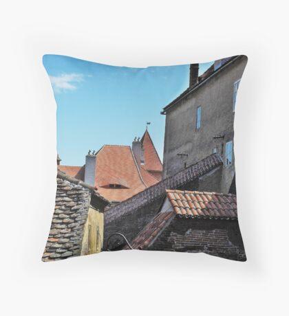 Old Walls New Tiles Throw Pillow
