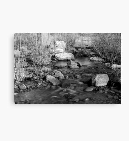 Panther Creek Canvas Print