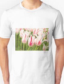 Marilyns T-Shirt