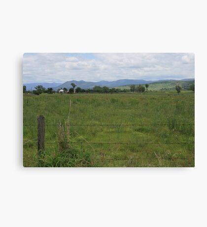 Blenheim Countryside Canvas Print