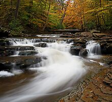 Autumn in Glen Leigh by Tim Devine