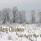 Merry Christmas & Happy New Year  by Antanas