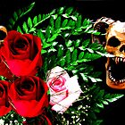 Skull N&#x27; Roses by Pbratt79