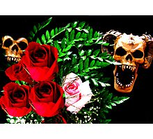 Skull N' Roses Photographic Print