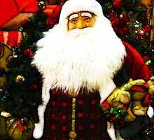 Father Christmas by shutterbug2010