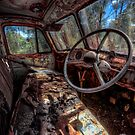 Deceased Timber Truck by Ian English