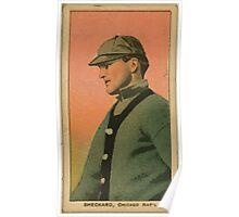 Benjamin K Edwards Collection Jimmy Sheckard Chicago Cubs baseball card portrait Poster