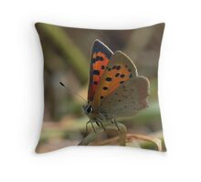 Small copper butterfly. Throw Pillow