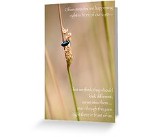 Miracles in Front of Us Greeting Card