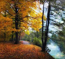 Autumn River View by Jessica Jenney